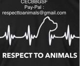 DMS RESPECT – Респект към животните!