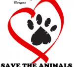 DMS HOPE – Да подарим надежда на бездомните животни