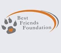 """DMS BEST FRIENDS  -Кампания """"Помогни на безпомощните"""""""