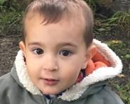 DMS TOTO – Теодор Цолов, 4 год.