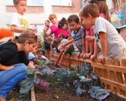 Вкусната градинка – уроци от природата за всички! DMS GRADINA